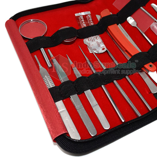Dissecting Instruments Set (Set of 19 Pcs.)